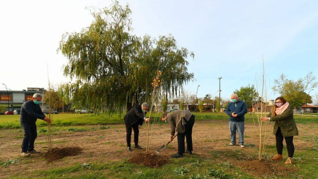 Se realizó la plantación del árbol fundacional del Parque Belgrano 1