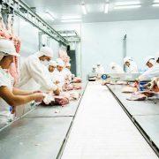 Un frigorífico cordobés exportará excedentes de cerdo a China 13