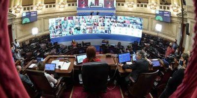 El Senado y la actividad parlamentaria virtual 8