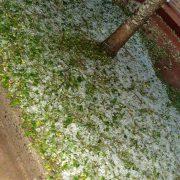 Fuertes tormentas con caída de granizo en diferentes zonas de la región 11