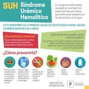 19 de Agosto: Día Nacional de la lucha contra el Síndrome Urémico Hemolítico (SUH) 14