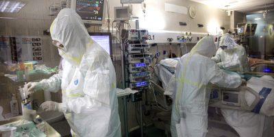 China y la OMS suponen que el coronavirus es de origen animal 10