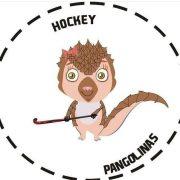El sueño de las Pangolinas, las pergaminenses que se encuentran en semifinales de un torneo virtual de Mami Hockey 1