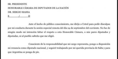 TRAS EL ESCÁNDALO: Renunció el diputado Ameri 7