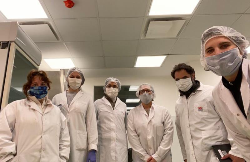 Construyen una biblioteca de nanoanticuerpos de llamas contra la COVID-19 4