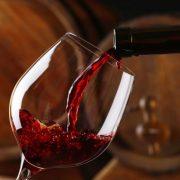 Aprendemos de vinos con la mejor sommelier de Argentina 13