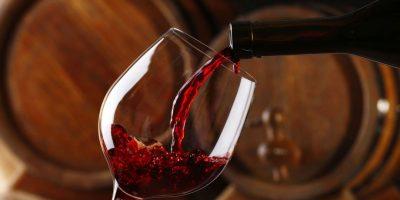 Aprendemos de vinos con la mejor sommelier de Argentina 6