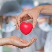 Argentina superó los 500 trasplantes de órganos realizados en pandemia 1