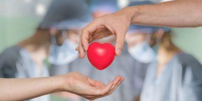 Argentina superó los 500 trasplantes de órganos realizados en pandemia 8