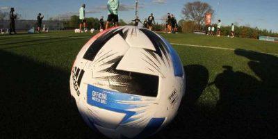FUTBOL: Mañana comenzará el torneo de AFA de primera división. 20