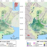 Presentan una nueva versión del mapa nacional de cultivos extensivos 13