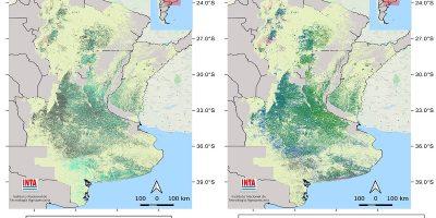 Presentan una nueva versión del mapa nacional de cultivos extensivos 10