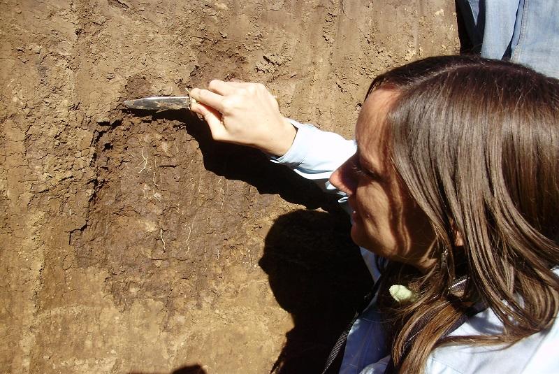 La microbiología del suelo revoluciona la producción agropecuaria 1