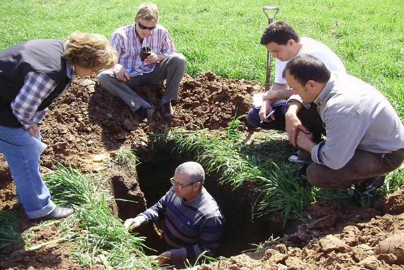 La microbiología del suelo revoluciona la producción agropecuaria 2