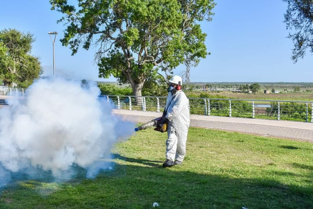 En San Nicolás fumigan espacios públicos para combatir el dengue 2