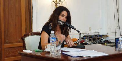 Sesionó el HCD: Resumen de lo acontecido 10