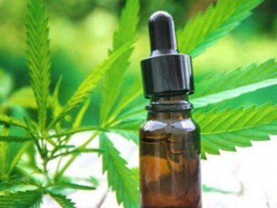 Nueva reglamentación de la ley nacional de uso medicinal de cannabis 1