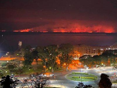 Es ley el proyecto que busca evitar la especulación con tierras incendiadas 5