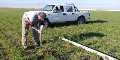 Agro adaptativo: ajustar la demanda agrícola a la oferta variable de agua 5