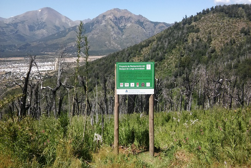 INTA: Restauran suelos y ambientes afectados por los incendios 2