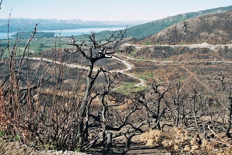 INTA: Restauran suelos y ambientes afectados por los incendios 3