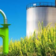 El Interbloque Federal pide por el tratamiento del proyecto sobre Biocombustibles 15