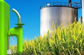 El Interbloque Federal pide por el tratamiento del proyecto sobre Biocombustibles 5