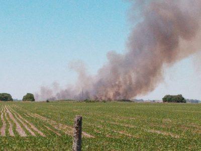 Cuatro dotaciones de Bomberos trabajan en un incendio de campo 12