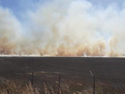 Dos incendios de campos son combatidos por Bomberos 3