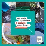 Saneamiento Ambiental brinda recomendaciones para evitar la proliferación de mosquitos 1