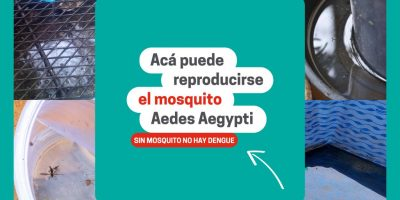Saneamiento Ambiental brinda recomendaciones para evitar la proliferación de mosquitos 6