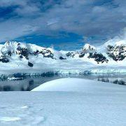 Antártida: una ola de calor generó cambios drásticos en microorganismos que producen la mitad del oxígeno del planeta 5