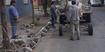 Desde el Municipio realizaron reparación de cordones cuneta 7