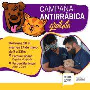 Vacunación antirrábica al aire libre 13