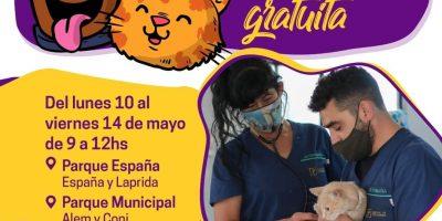 Vacunación antirrábica al aire libre 14