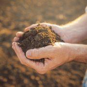 Bayer anuncia el lanzamiento de la primera fase de la iniciativa Carbono en la Argentina 2