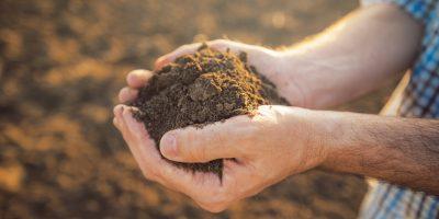 Bayer anuncia el lanzamiento de la primera fase de la iniciativa Carbono en la Argentina 7