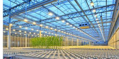 """Bayer: """"El Breeding de Precisión es una de las transformaciones de mayor impacto en la historia de la agricultura"""" 8"""