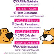 El móvil de castración se encuentra esta semana en el CAPS Raúl Arballo 14