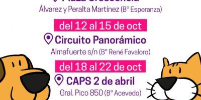 El móvil de castración se encuentra esta semana en el CAPS Raúl Arballo 4
